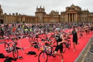 Blenhim Triathlon Challenge